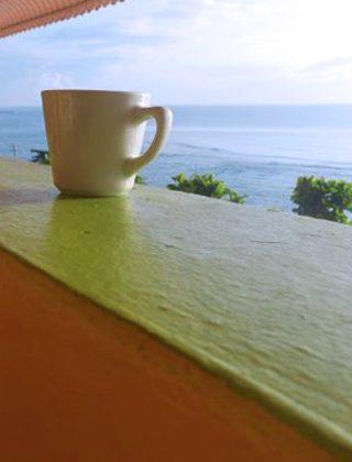 Standard Ocean View Guestroom